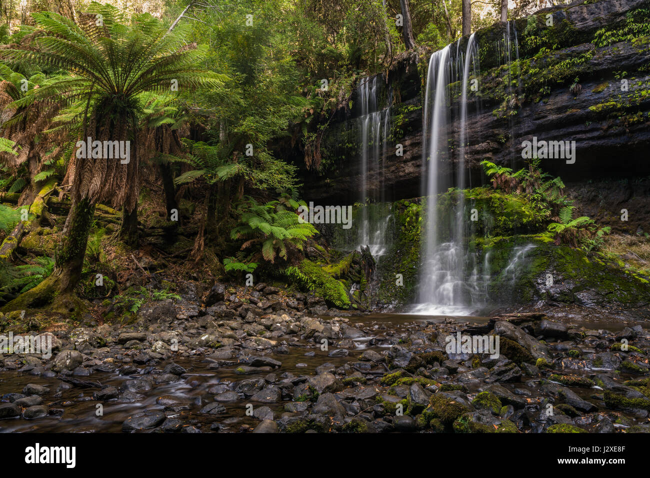 Long exposure of a waterfall, with a silky look, surrounded by lush vegetation and rocks covered with moss. - Stock Image