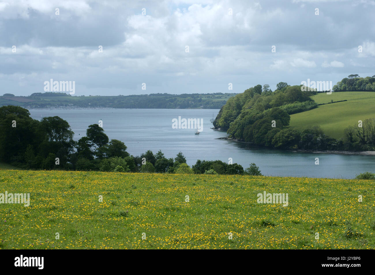 The river Fal - Stock Image