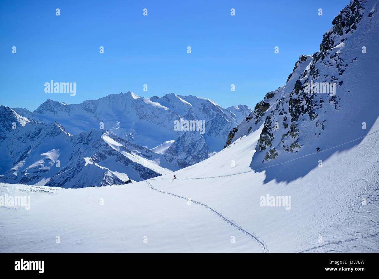 Back-country skier ascending to Realspitze, Hochfeiler and Hochferner in background, Zwerchwand, Zillertal, Zillertal Stock Photo