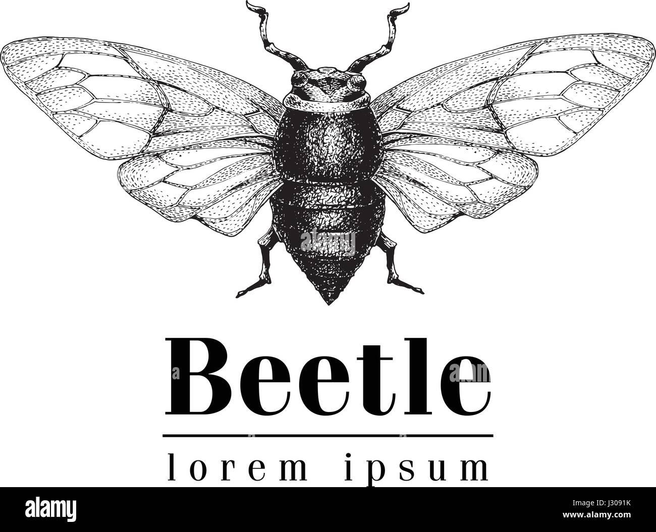 Retro Insect