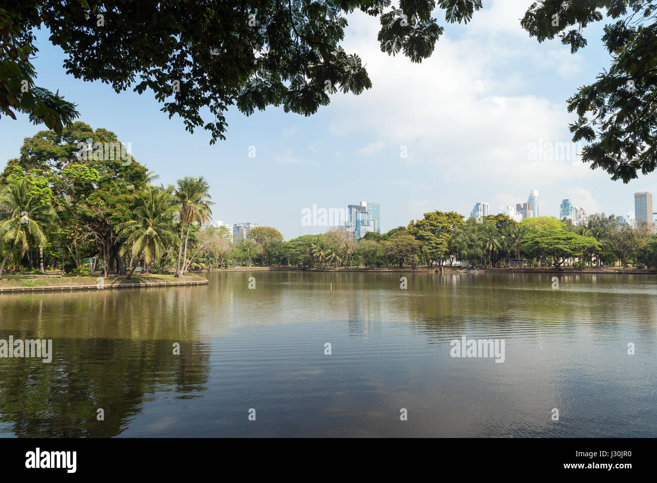 View of palm trees and lake at the Lumpini (Lumphini) Park in Bangkok, Thailand. - Stock Image
