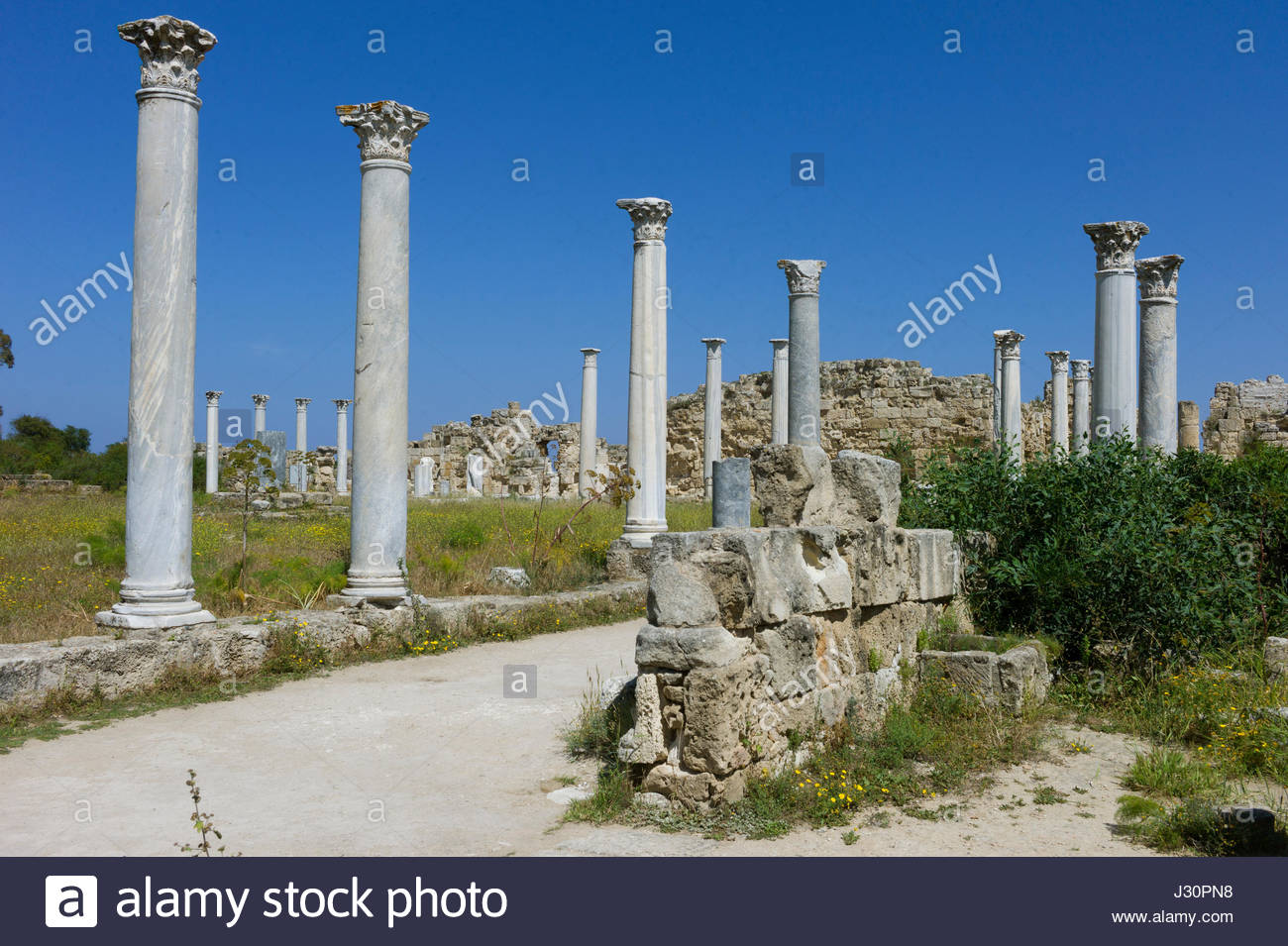 Marble columns standing in the ruined ancient city of Salamis, north Cyprus Stock Photo