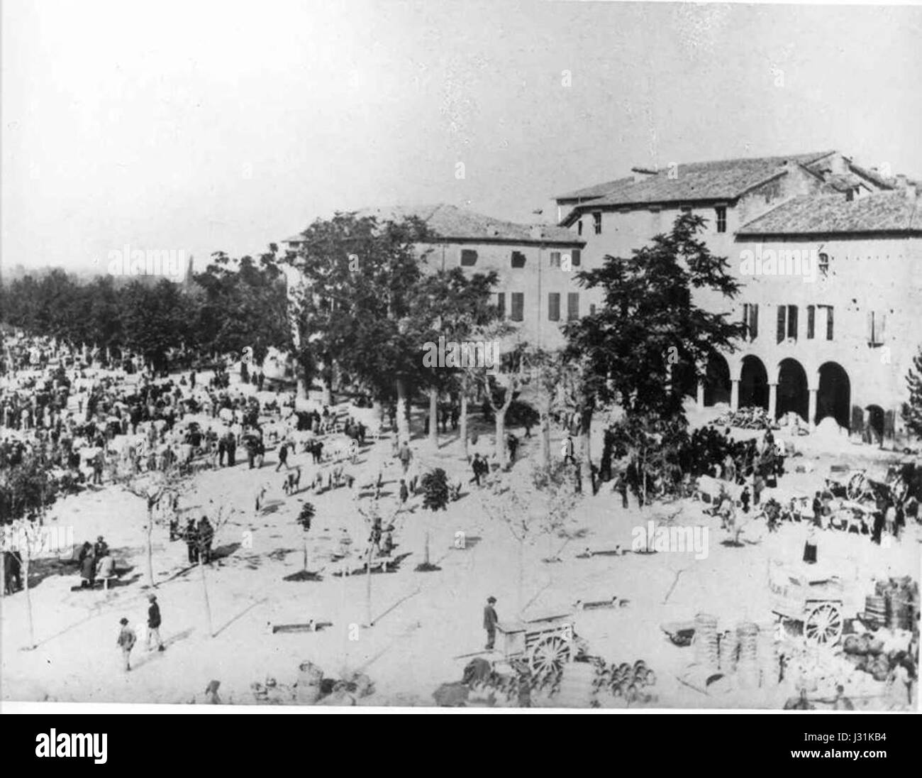 Mercato del bestiame in Piazza del Castello a Mirandola (1902) - Stock Image