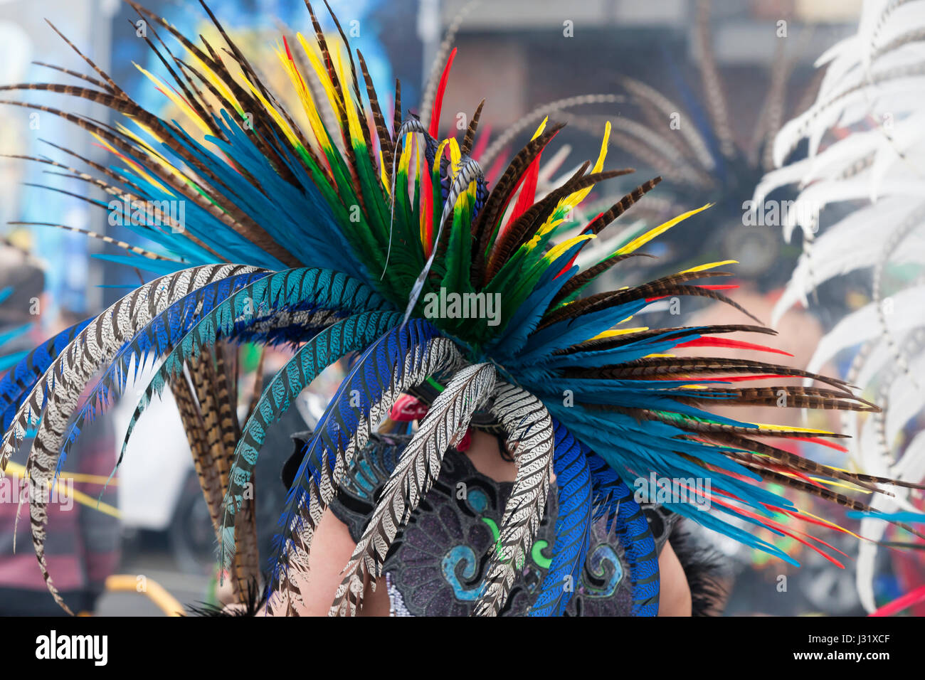 Seattle, USA. 01st May, 2017. Feathered headdress of one of the dancers from the Ce Atl Tonalli group as they lead - Stock Image