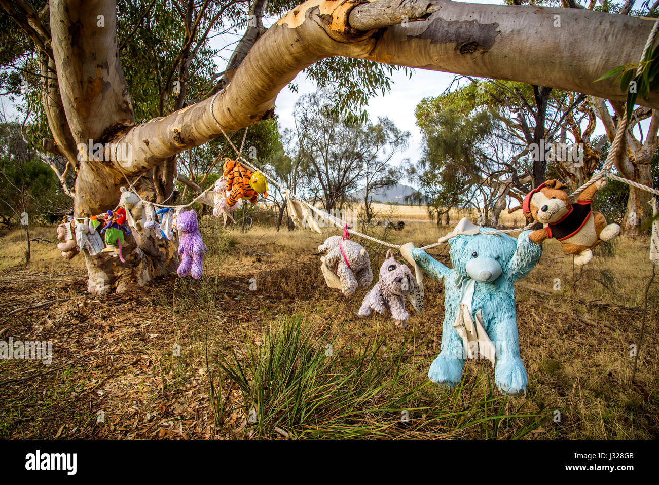 Forgotten teddy bears monument at Eyre Peninsula, South Australia. - Stock Image