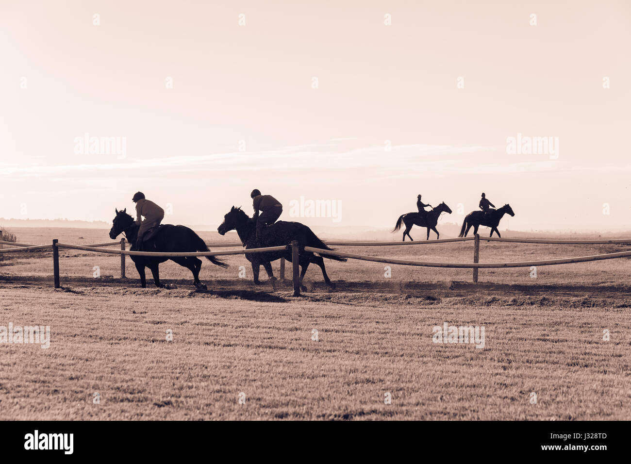 Race horses riders running on countryside training track morning landscape. - Stock Image