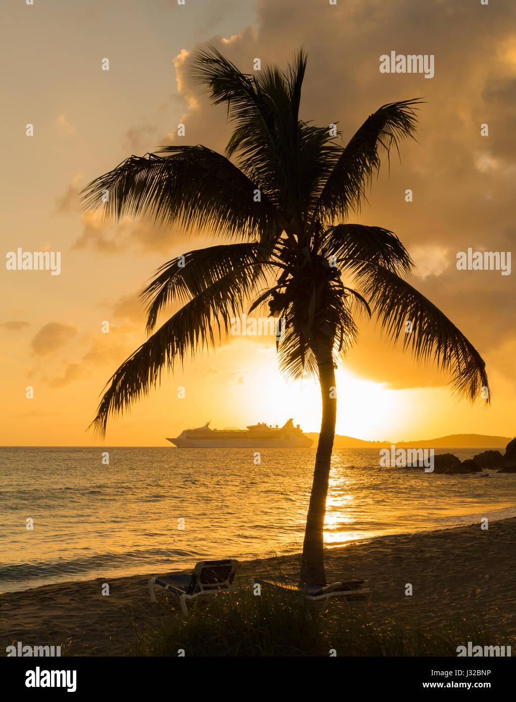 Palm tree at sunset, Frenchmans bay, St Thomas, US Virgin Islands, Caribbean with cruise ship on horizon Stock Photo