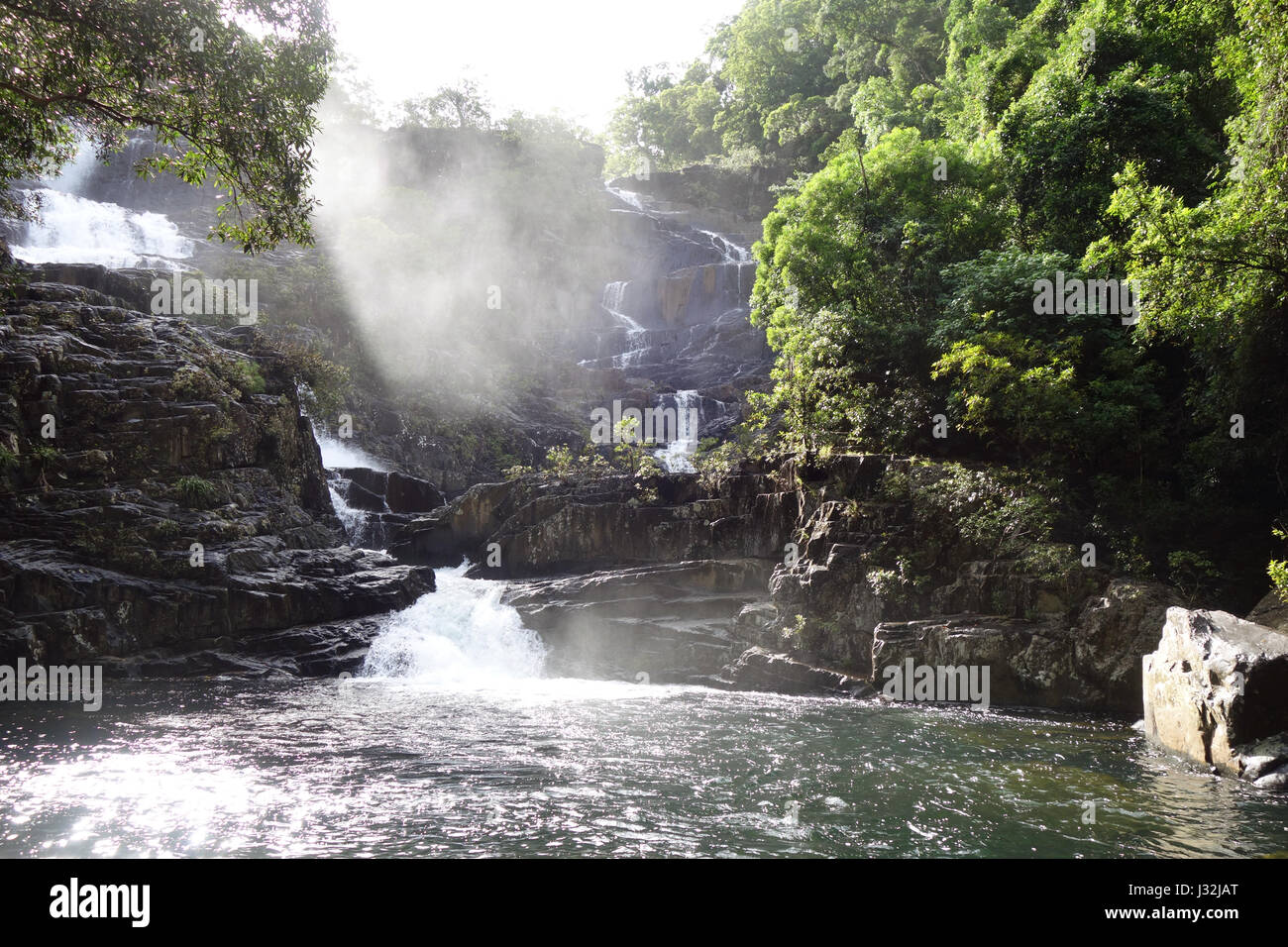 Home Rule Falls, Bloomfield Track, Daintree National Park, Queensland, Australia - Stock Image