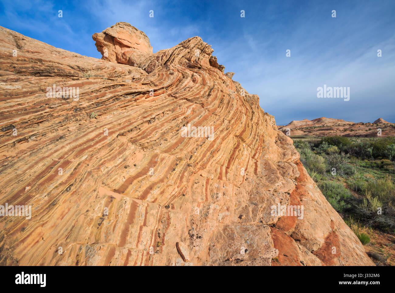 striped sandstone slickrock in the harris wash basin near escalante, utah - Stock Image