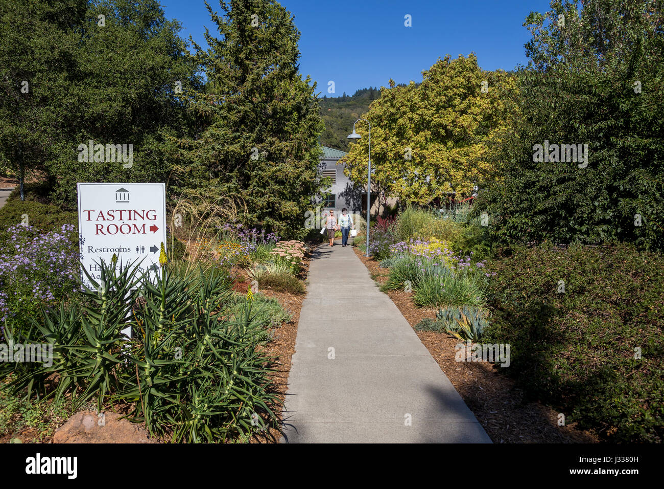people, tourists, wine tasting room, Imagery Estate Winery, Glen Ellen, Sonoma Valley, Sonoma County, California - Stock Image
