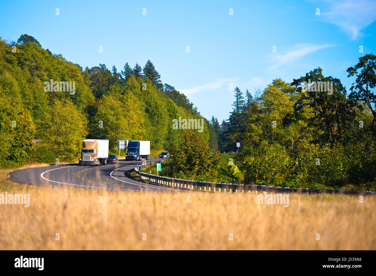 Two large rigs semi-trucks with trailers surrounded by cars at the turn winding road surrounded by green trees with - Stock Image