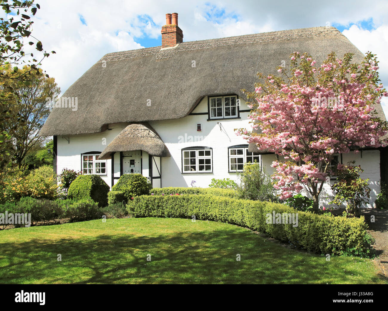 Pretty thatched country cottage and garden, Allington, Wiltshire, England, UK - Stock Image