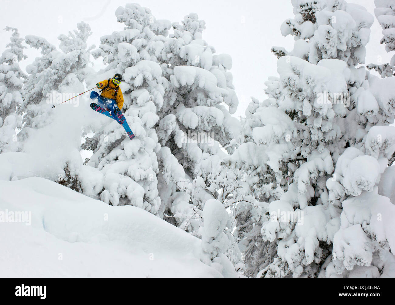 Skifahrer jumping through the deeply snowed in forest, Kaltenbach, Zillertal, Austria - Stock Image