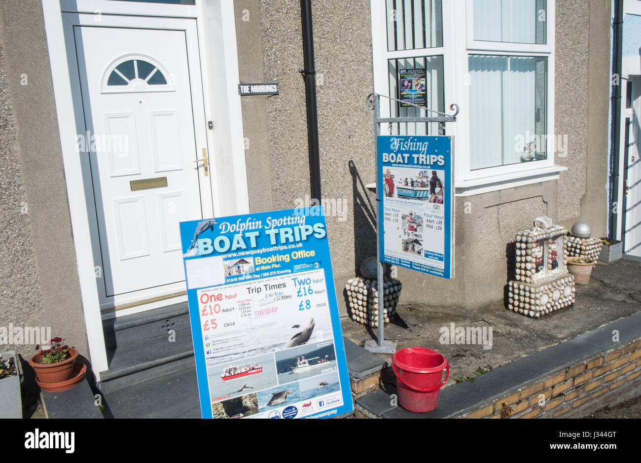Signs,posters,adverts,publicity,for,fishing,trips,boat,trip,crab,dolphin,watching,New Quay,harbour,Cardigan Bay,Ceredigion,coast,West - Stock Image
