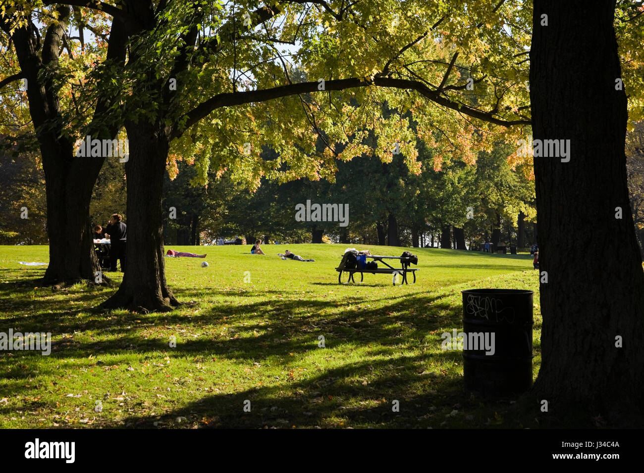 People picnicing on Mount Royal Park in autumn, Montreal, Quebec, Canada. - Stock Image
