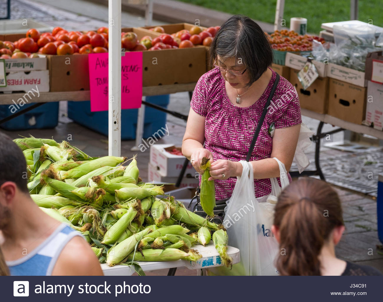 Woman looking at fresh ears of corn at farmers market, Copley Square, Boston, Suffolk County, Massachusetts, USA - Stock Image