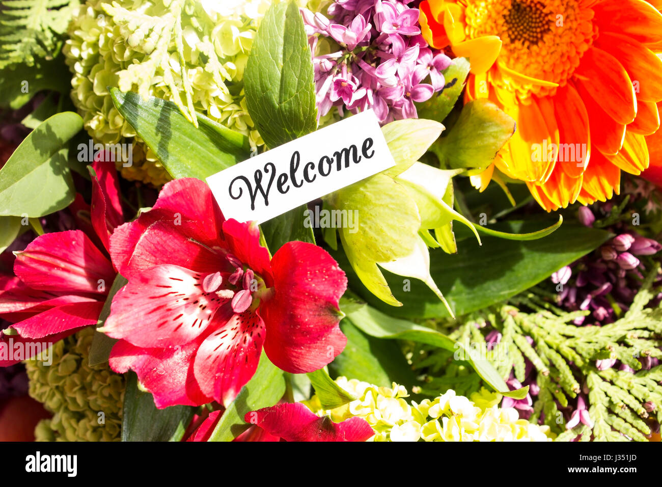 Welcome card with bouquet of flowers stock photo 139637973 alamy welcome card with bouquet of flowers izmirmasajfo
