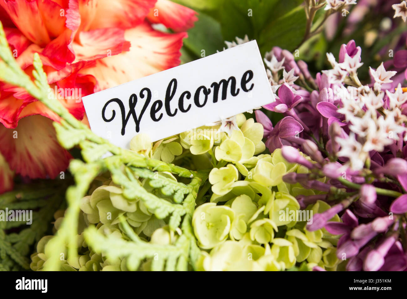 Welcome Card With Bouquet Of Flowers Stock Photo 139638008 Alamy