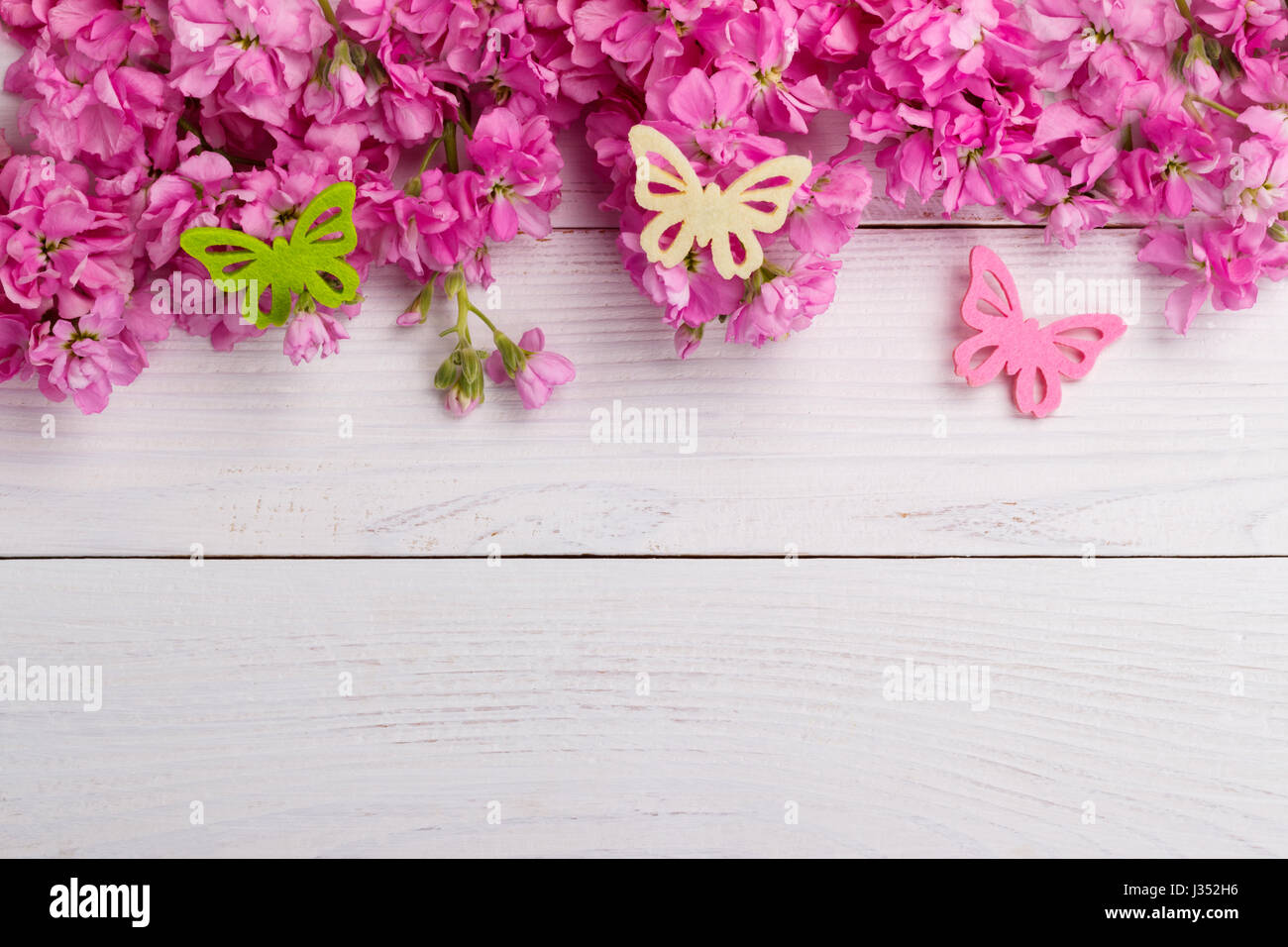 Matthiola incana stock photos matthiola incana stock images alamy fragrant pink stock flowers matthiola over white wooden background stock image mightylinksfo Gallery