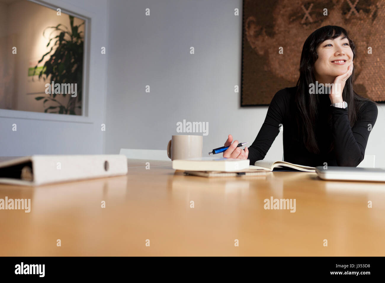 Portrait of a professional young businesswoman - Stock Image