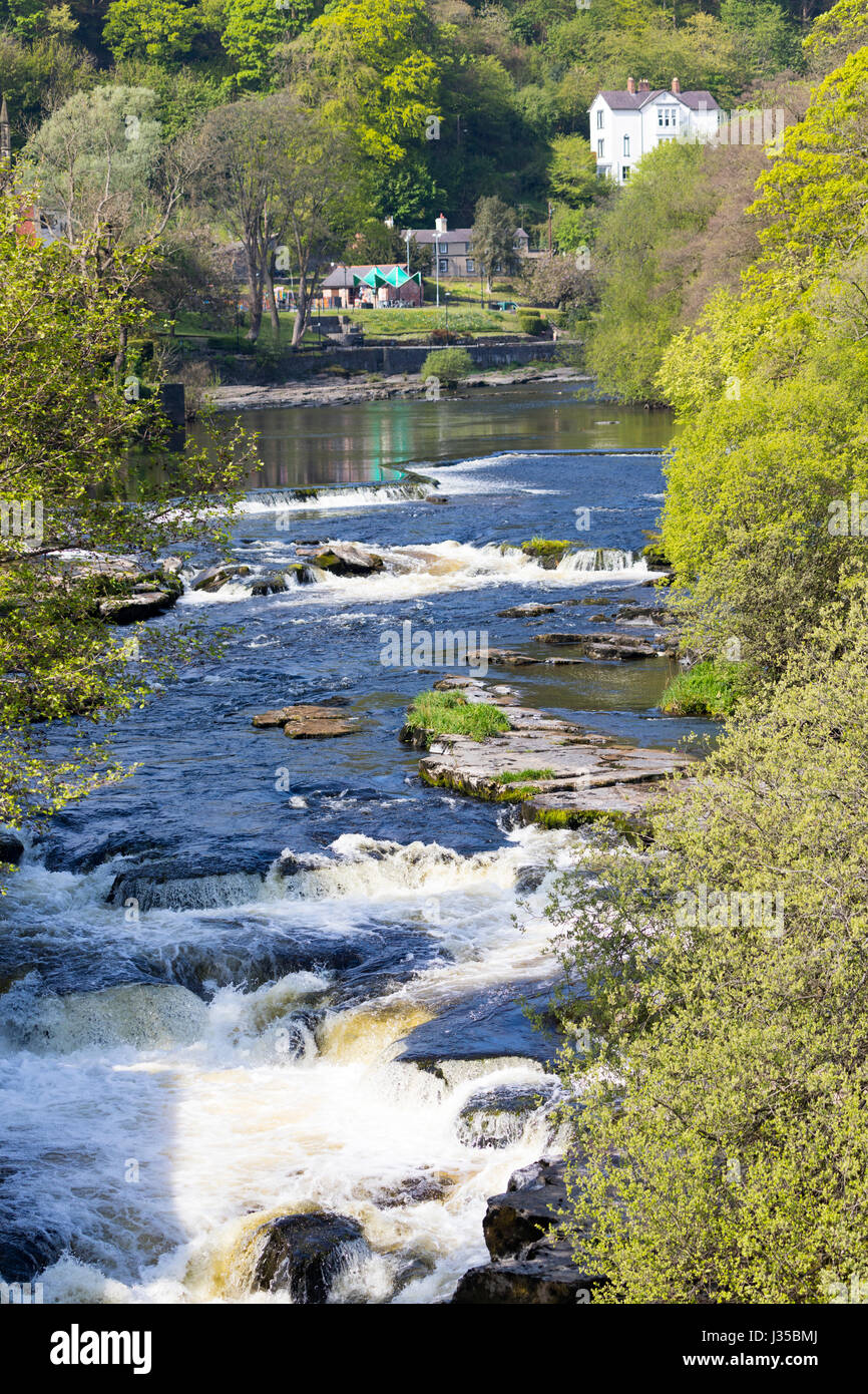 The River Dee passing through an Area of Outstanding Natural Beauty at Llangollen in North Wales in the height of Stock Photo