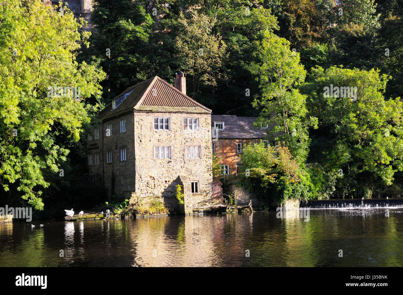 The Old Fulling Mill on the banks of the River Wear, Durham City, North of England, UK - Stock Image