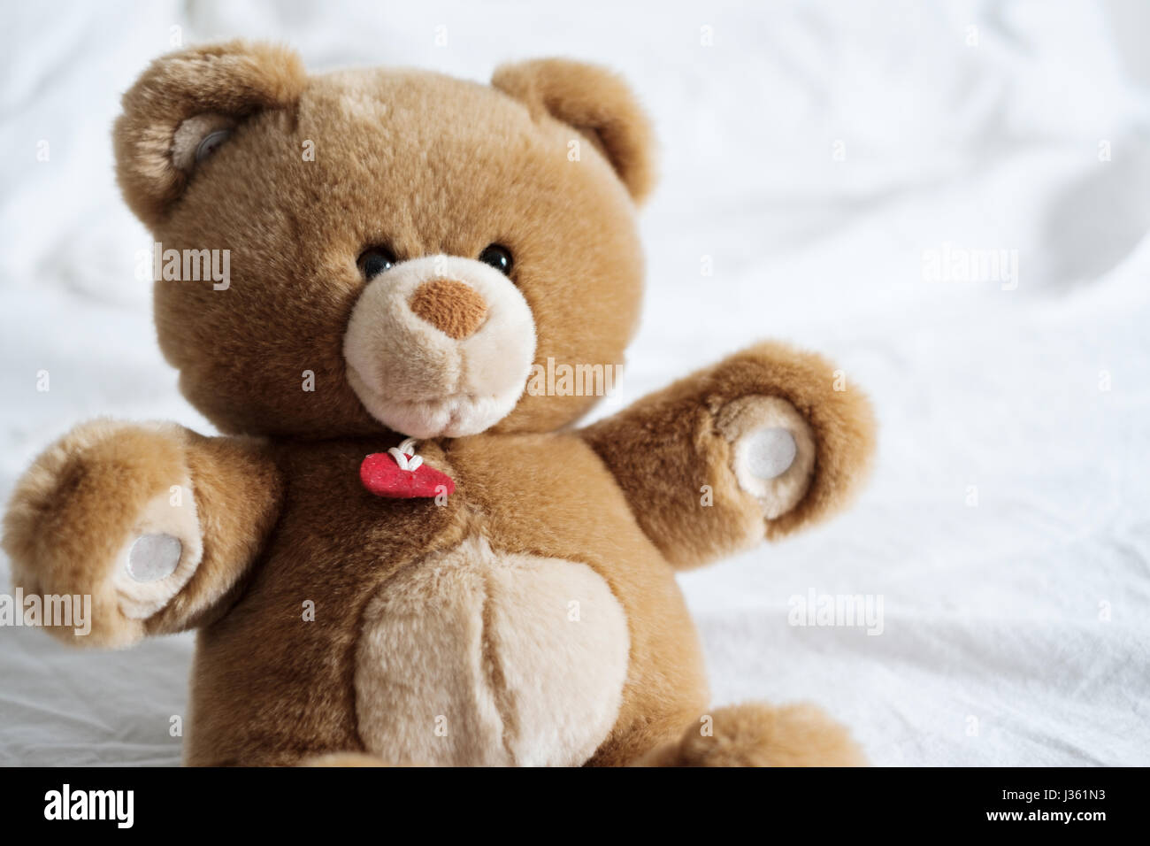 Cozy and soft teddy bear lying on the bed in the morning light - Stock Image