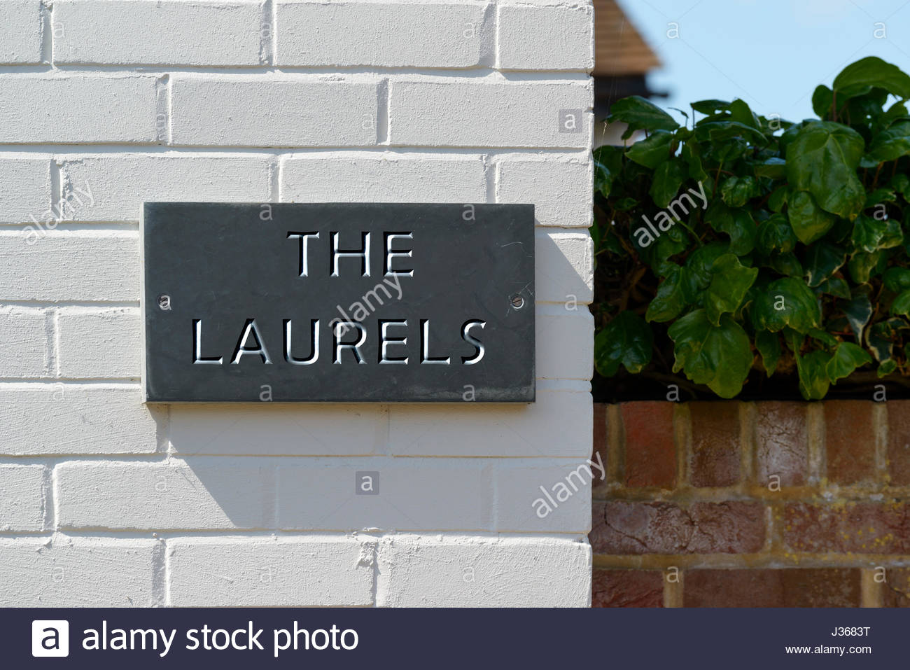Laurels stock photos laurels stock images alamy for The laurel house