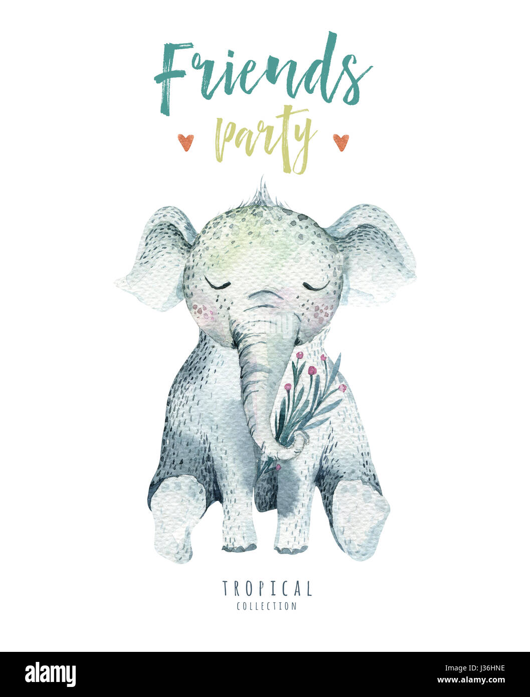 Baby Animals Nursery Isolated Illustration For Children Watercolor Boho Tropical Drawing Child Cute Tropic Elephant Shower