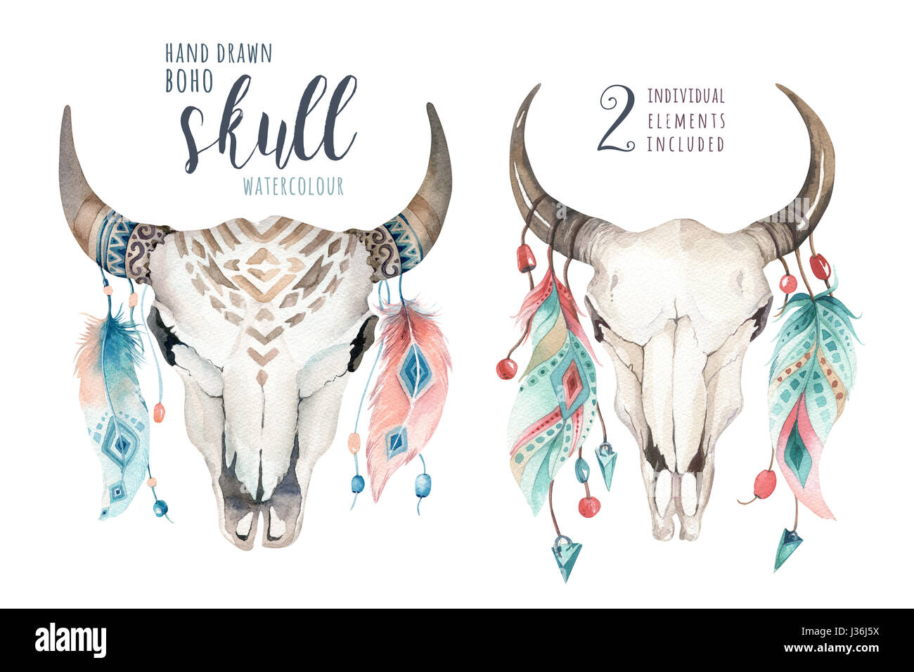 Cow Skull Cut Out Stock Images & Pictures - Alamy