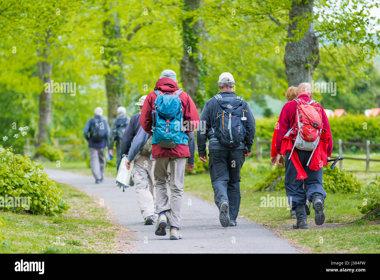 Group of elderly people walking with rucksacks preparing to go hiking or rambling. - Stock Image