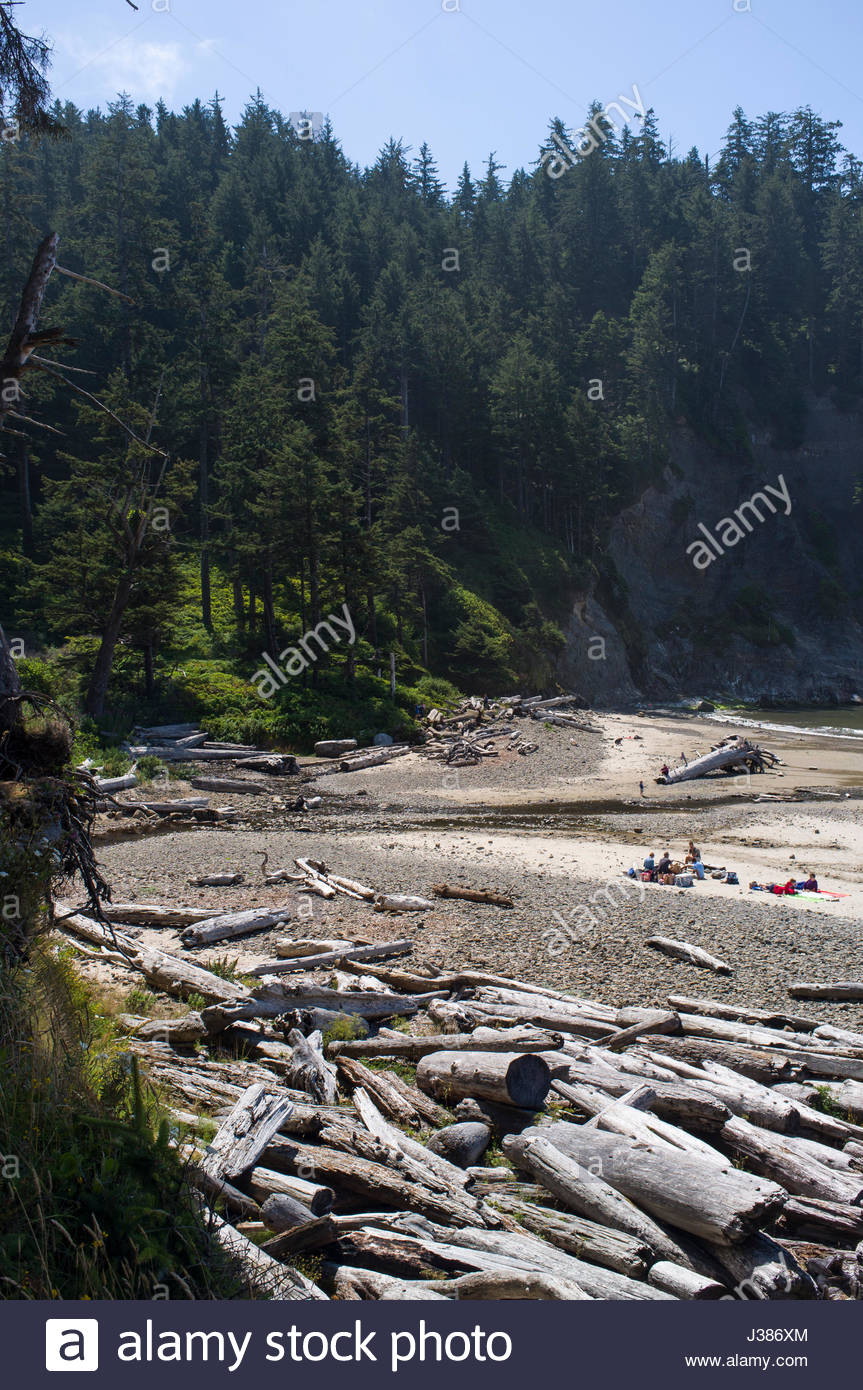 Short Sands Beach, Oswald West State Park, Tillamook County, Oregon, USA - Stock Image