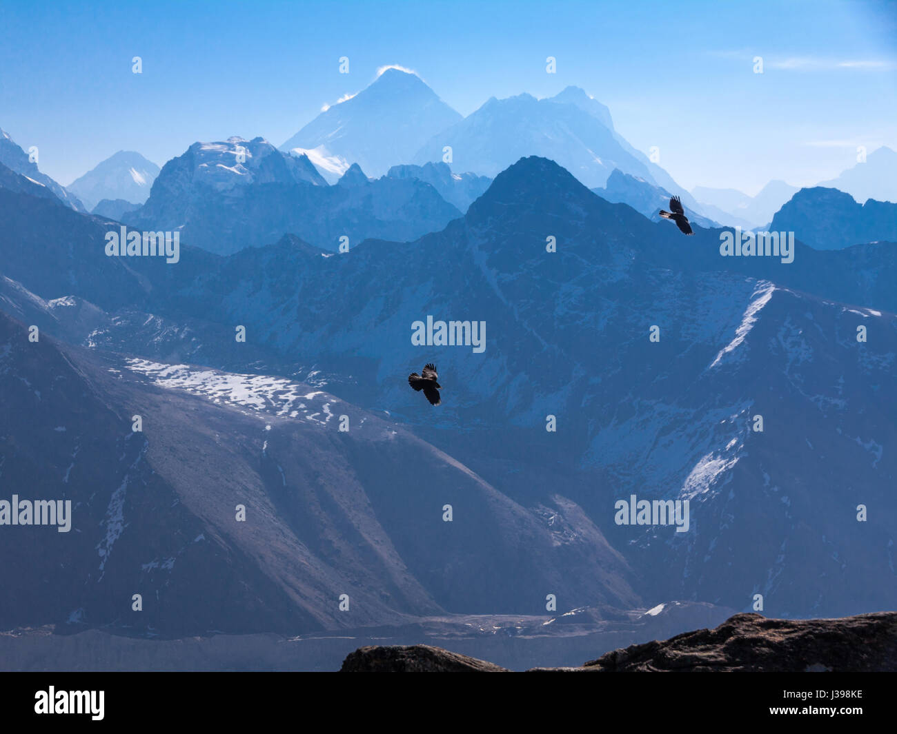 Two Ravens enjoy thermals near Gokyo Ri with Mount Everest back-lit on the horizon - Stock Image
