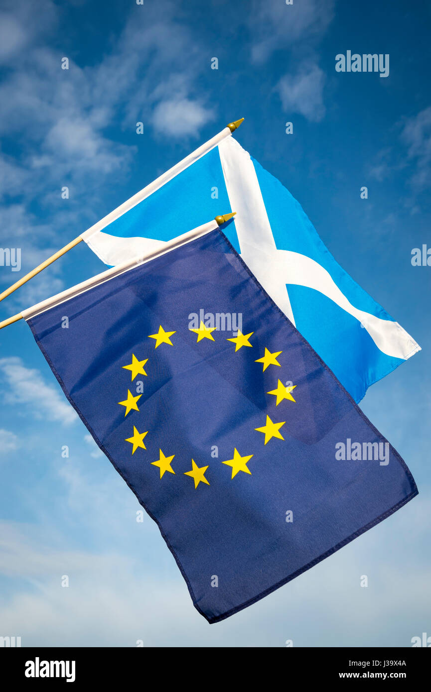 EU European Union and Scottish flags flying together in Brexit solidarity in bright blue sky - Stock Image
