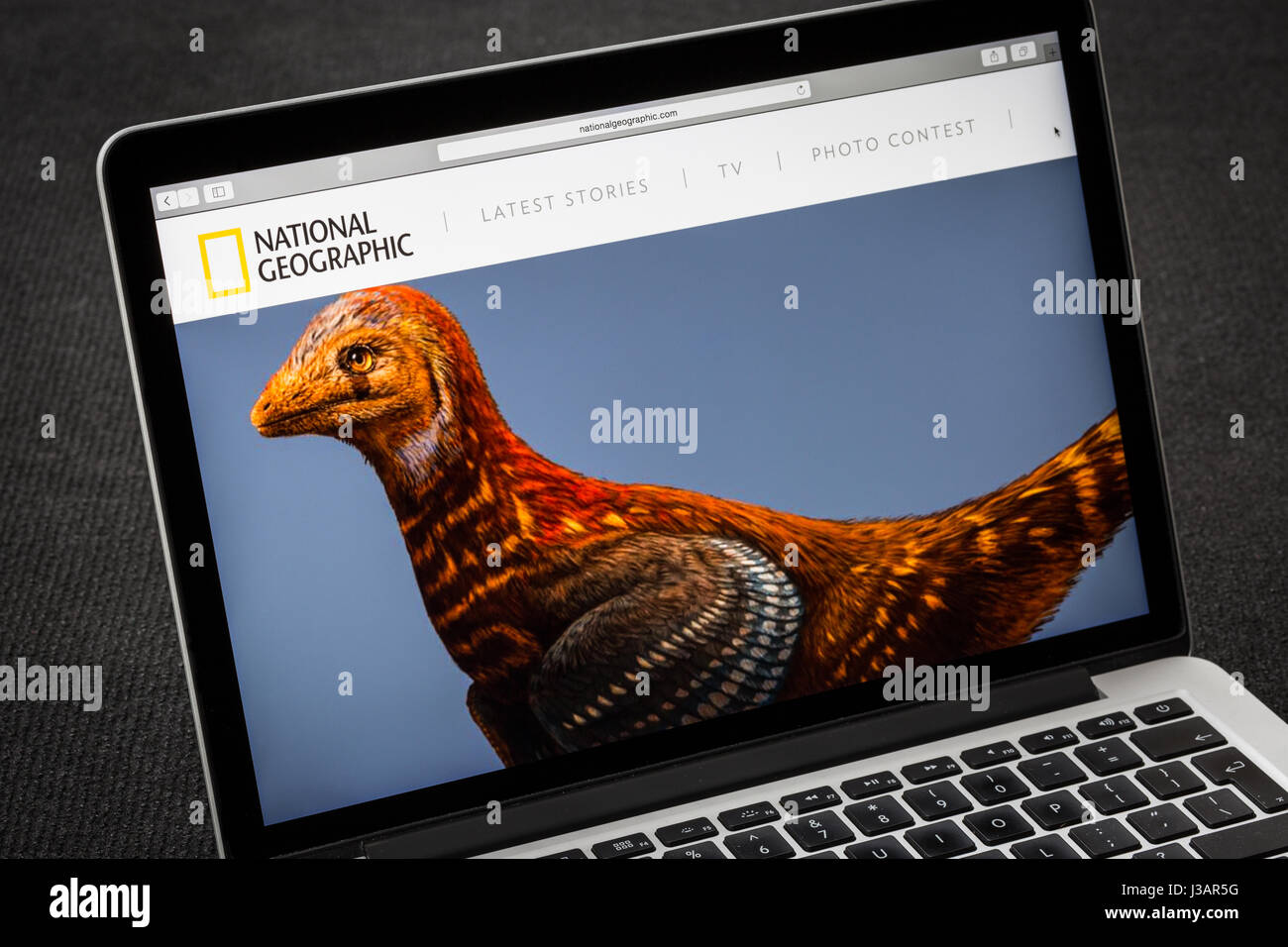 National Geographic website - Stock Image