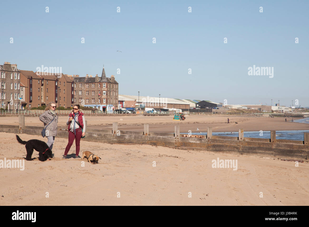 Portobello beach, Edinburgh, UK. 5th May, 2017. Two women standing with coffe. With dogs around playning on the Stock Photo