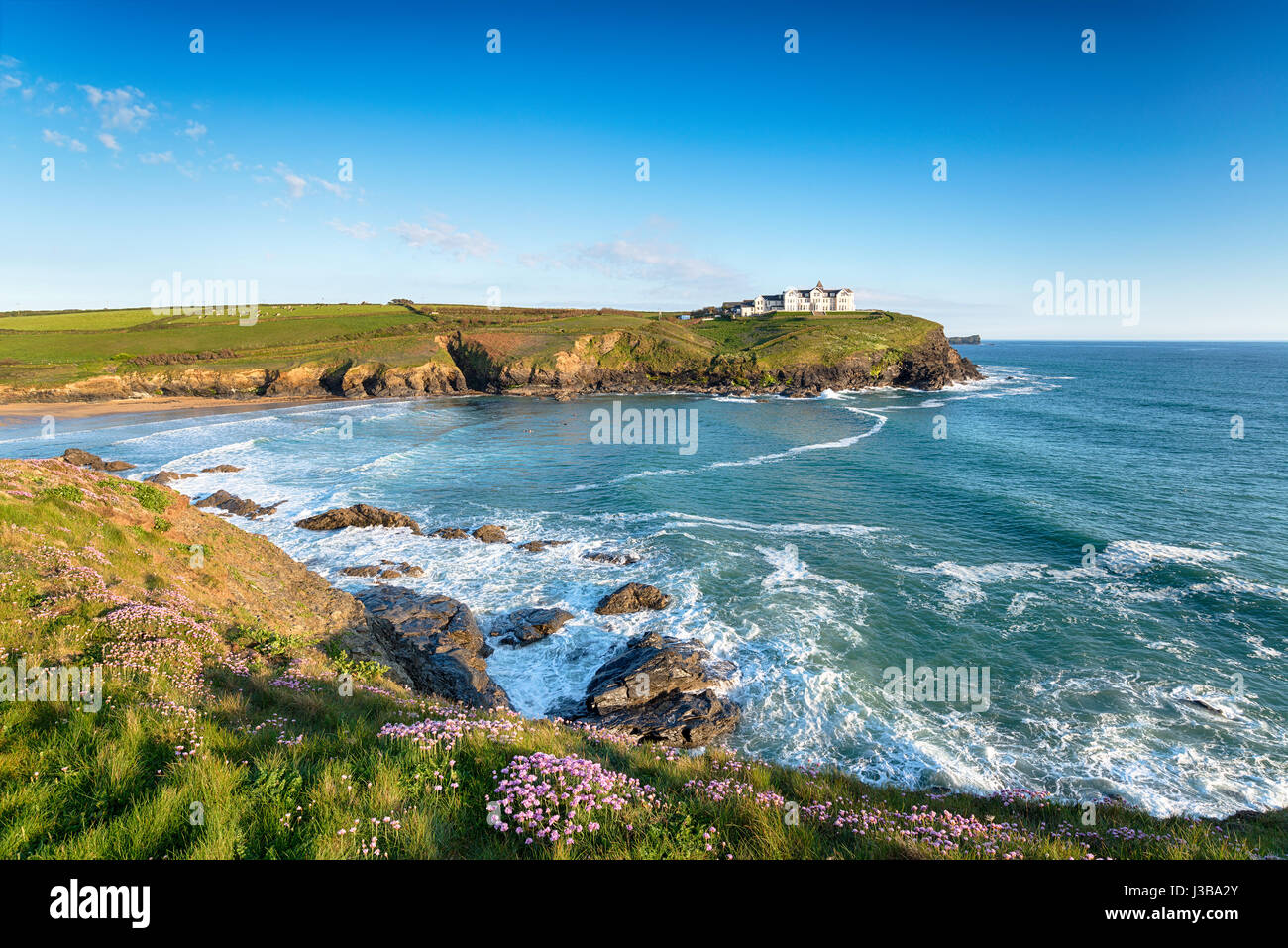 Summer on cliffs above Poldhu Cove near Mullion on the Cornish coast - Stock Image