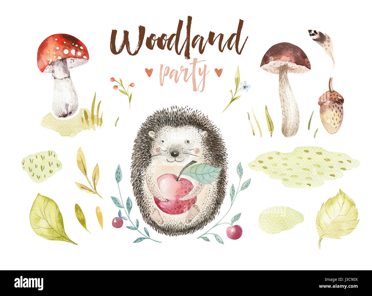 Cute baby animal nursery isolated illustration for children. Watercolor boho forest drawing, watercolour, hedgehog - Stock Image
