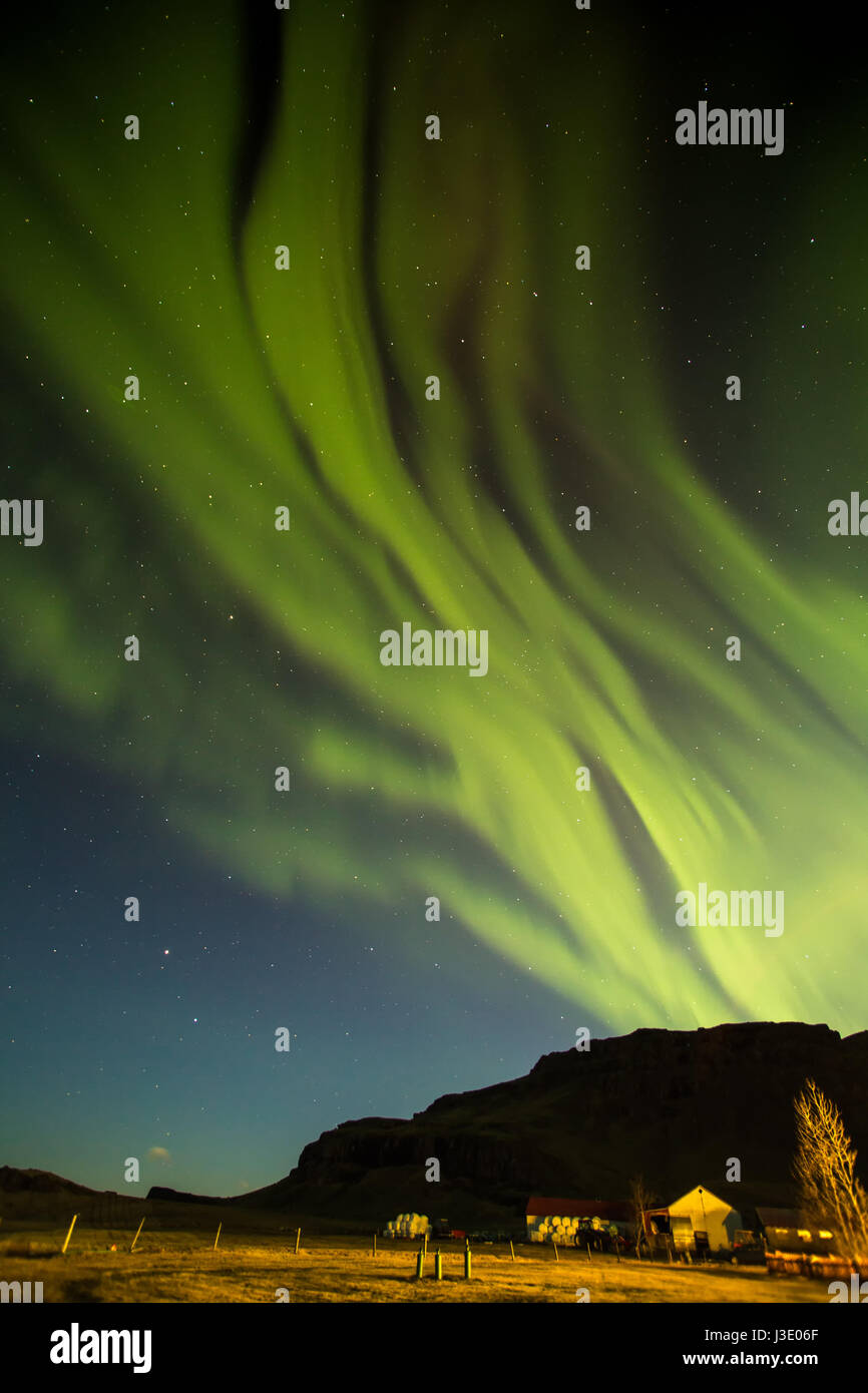 Aurora borealis over a field in Iceland - Stock Image