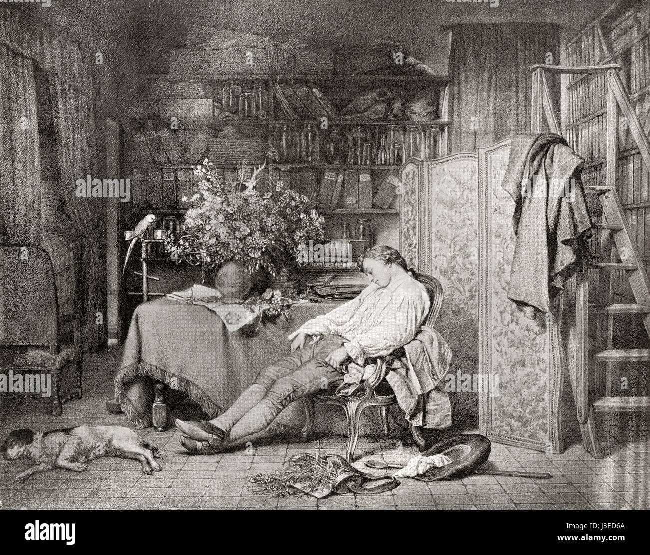 Linnaeus at home asleep in a chair after returning from one of his botanical excursions.  Carl Linnaeus, 1707 – 1778, aka Carl von Linné.  Swedish botanist, physician, and zoologist.  From Hutchinson's History of the Nations, published 1915. Stock Photo