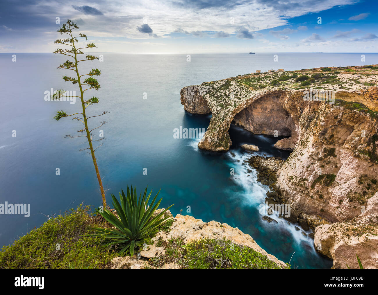 Malta - The famous arch of Blue Grotto cliffs with green leaves and tree - Stock Image