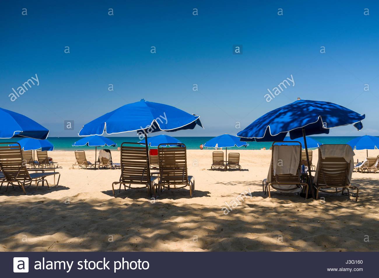 lounge chairs under blue umbrellas, Hapuna Beach Prince Hotel, South Kohala, Hawaii, USA - Stock Image