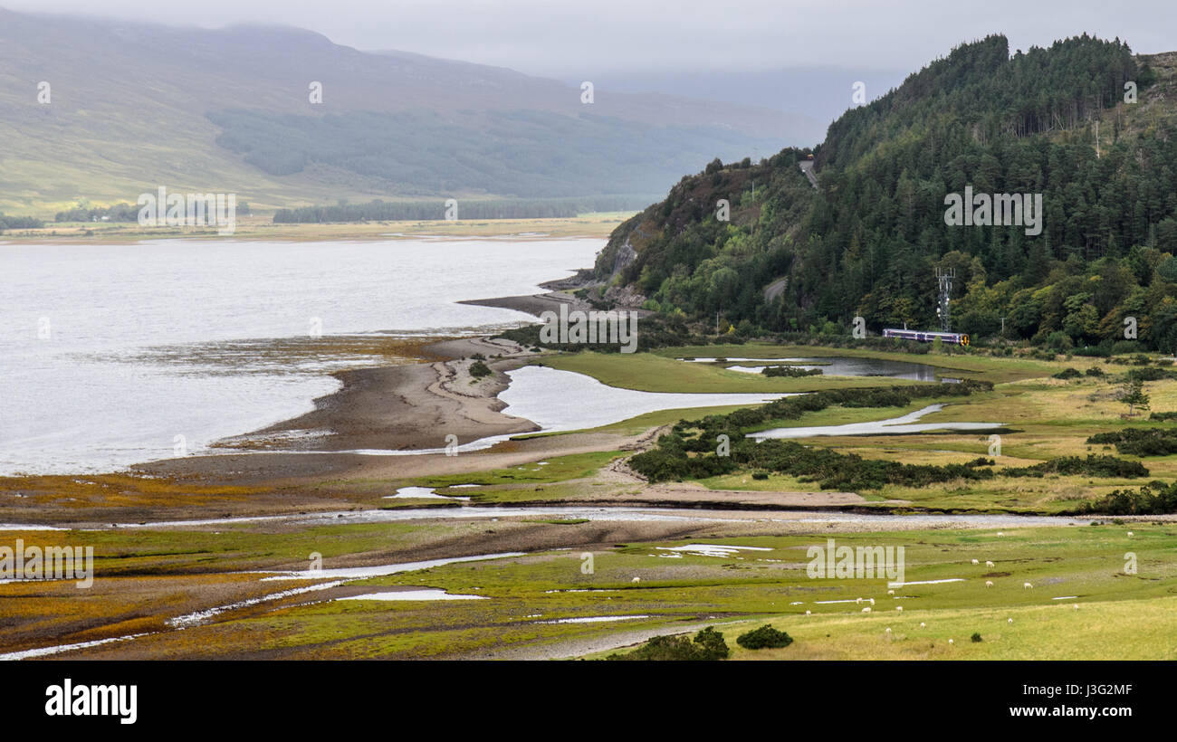 A Scotrail passenger train crosses the glacial delta estuary of the River Attadale on the Kyle of Lochalsh railway - Stock Image