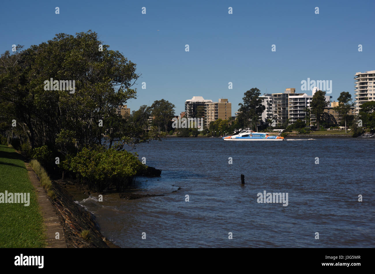 Brisbane, Australia: CityCat ferry crossing the Brisbane River at St Lucia - Stock Image