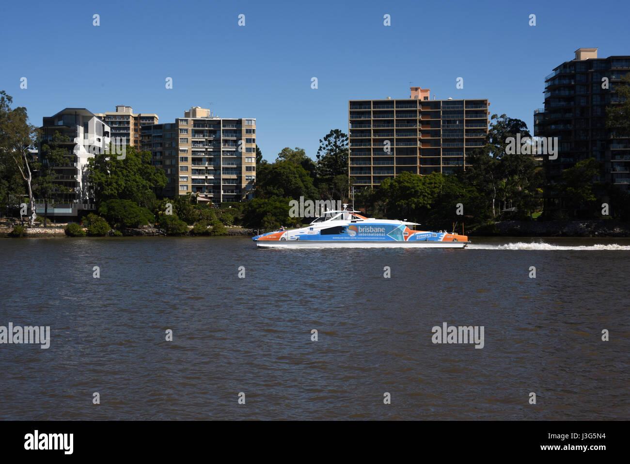 Brisbane, Australia: CityCat ferry on Brisbane River at St Lucia - Stock Image