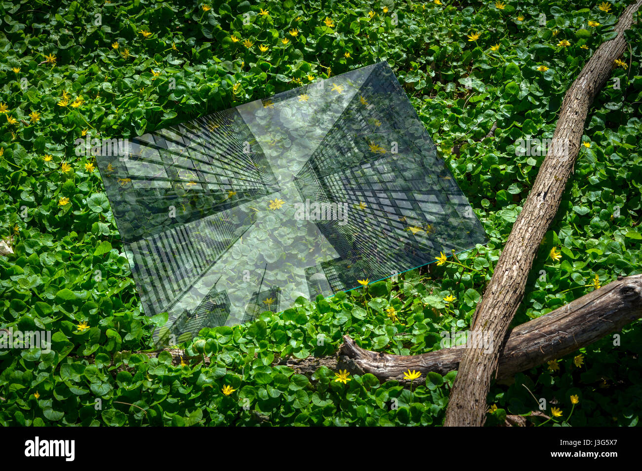 Abstract Deforestation Concept Showing City Reflection In A Forest - Stock Image