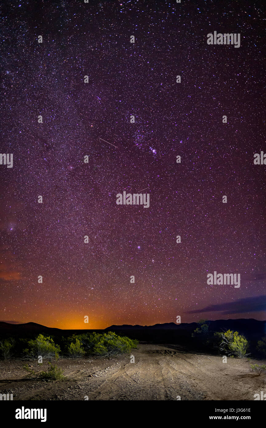 Stars in Sky - Stock Image