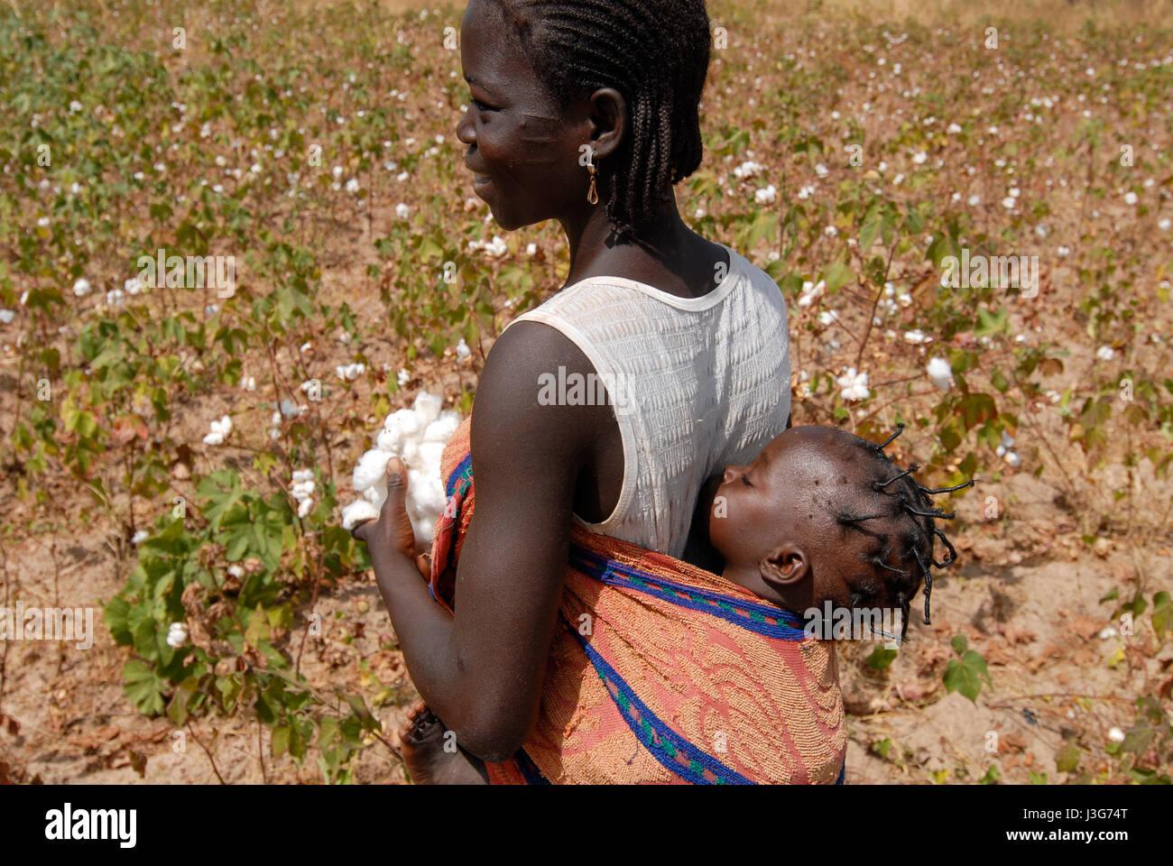 Burkina Faso village Kayao harvest of