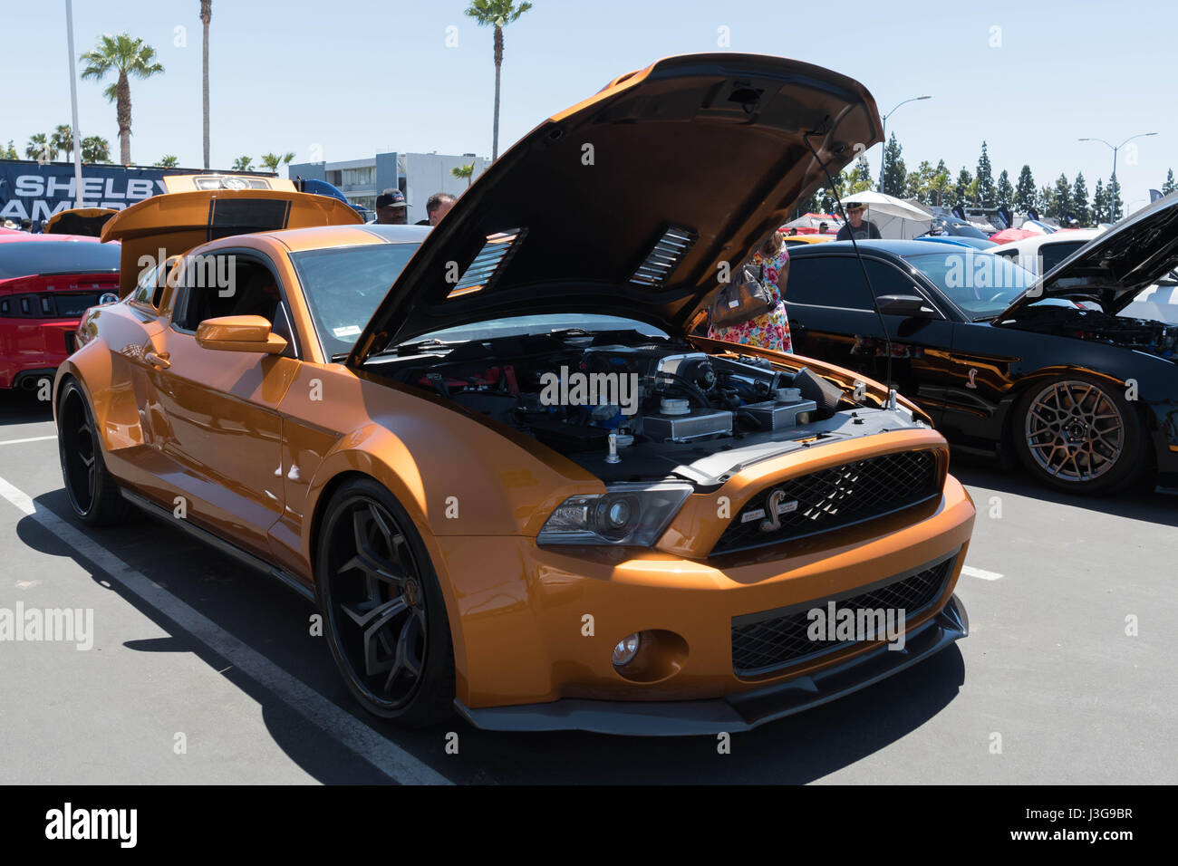 Buena park usa april 30 2017 ford mustang gt 500 super snake fifth generation on display during the fabulous fords forever