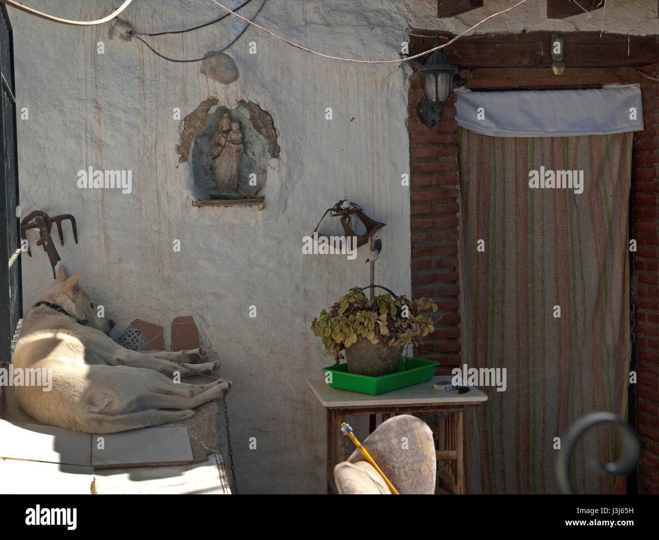 A dog sleeps in the front garden of a house on the Sacromonte Hill in Granada - Stock Image